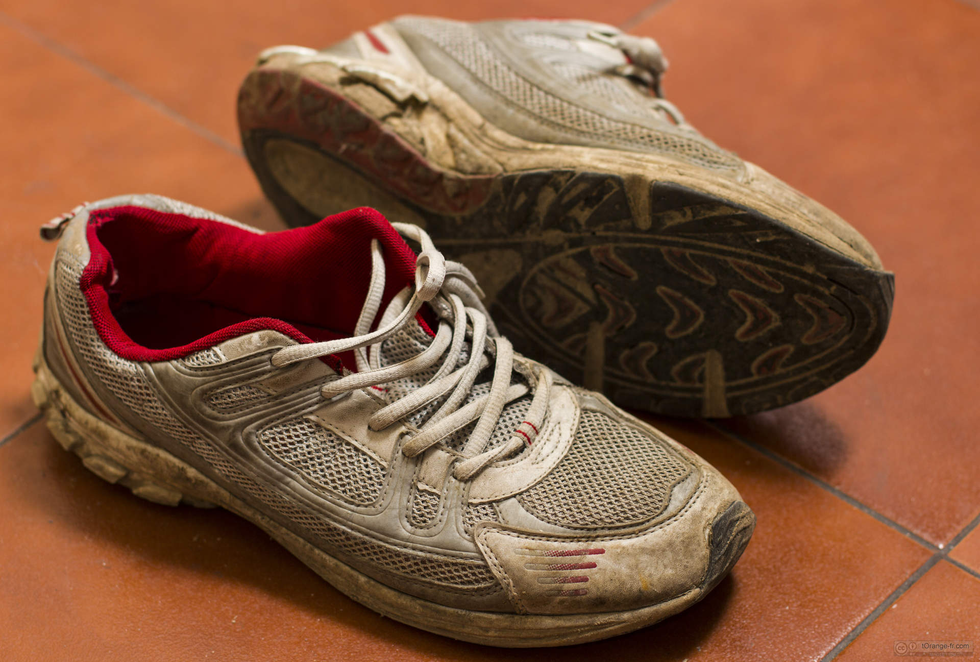 Choisir ses chaussures de Squash: nos conseils